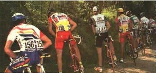 funny picture Cyclists hold pee break