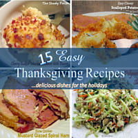 Easy Thanksgiving Recipes... delicious dishes for the holidays