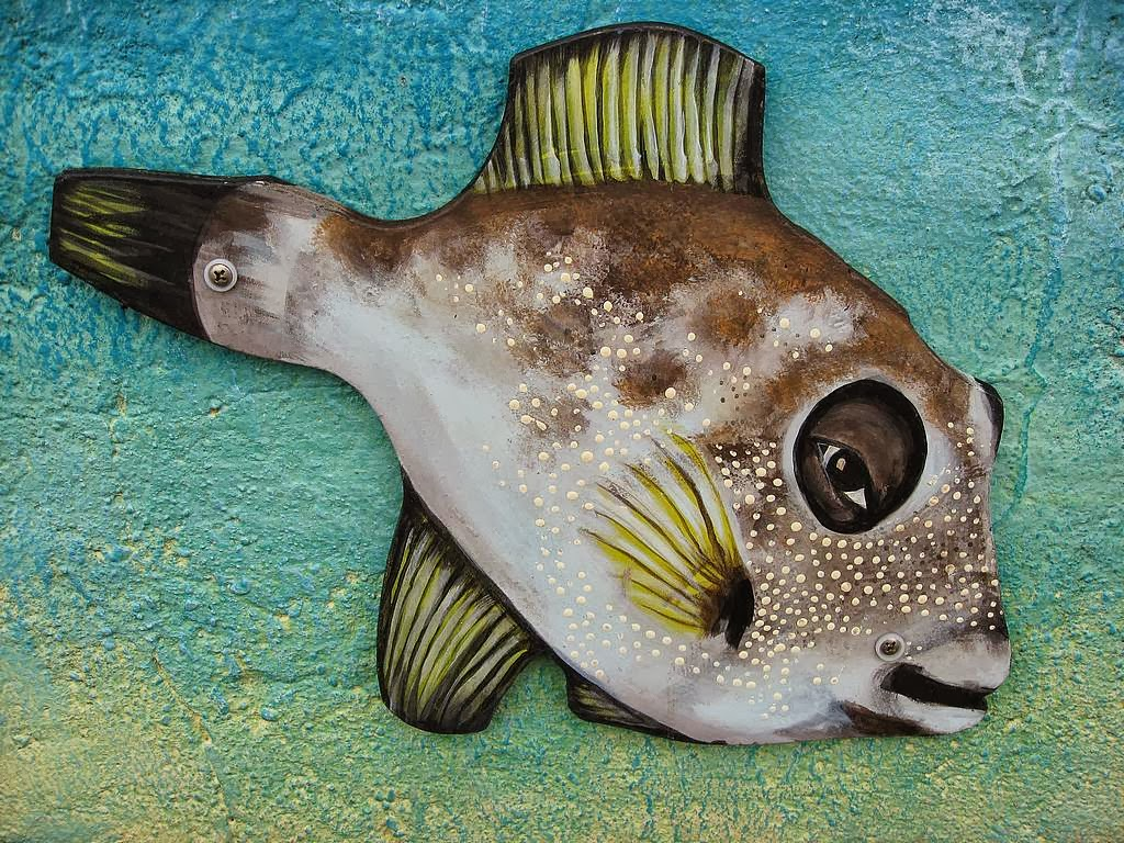 Porcupine puffer fish wallpapers top hd wallpapers for Porcupine puffer fish