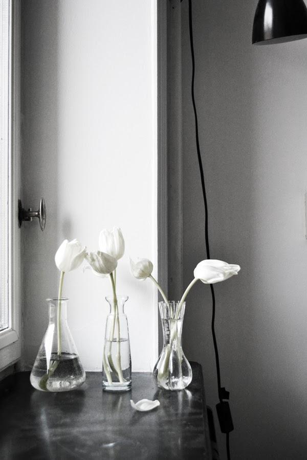 tulips-anna-wedin-oy-blog