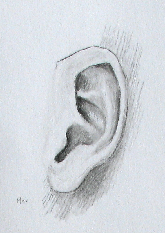 Ear Drawings Related Keywords - Ear Drawings Long Tail ... Ear Sketches