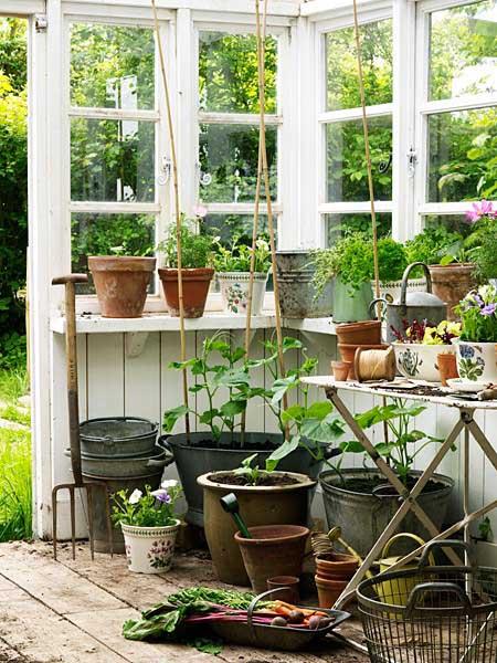 decoracion  interior en un refugio-invernadero