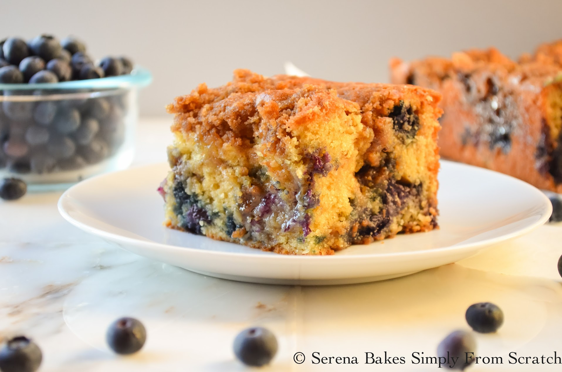 Blueberry Cinnamon Swirl Crumb Coffeecake by Serena Bakes Simply From Scratch