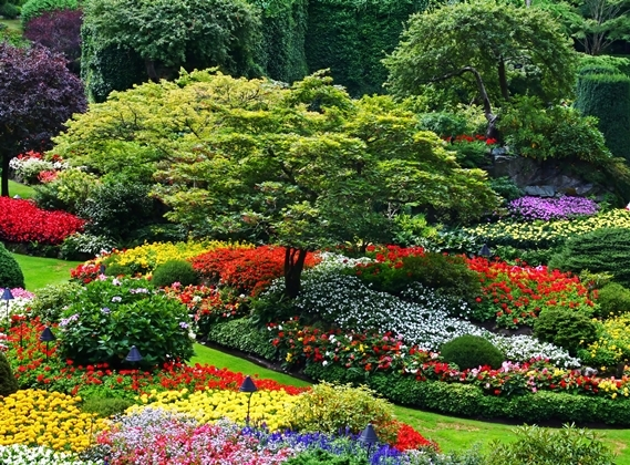 50 most beautiful gardens in the world - OMUSISA