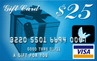 25-Visa-Gift-Card