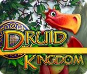 เกมส์ Druid Kingdom