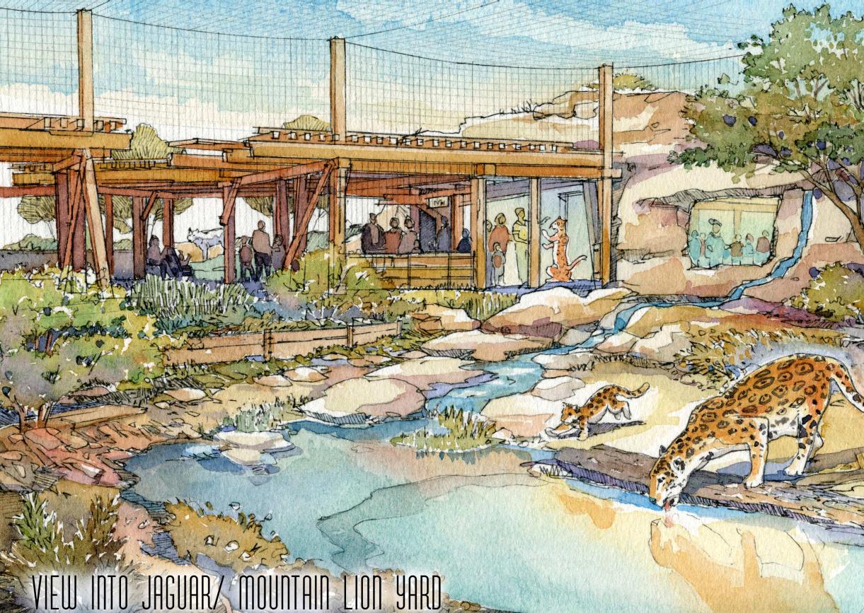 El paso development news el paso zoo master plan new for Mountain designs garden city