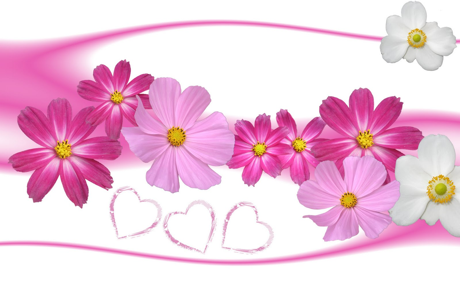 3d flower wallpaper labels 3d flower