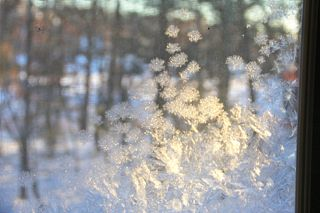 photo of sunlight on frosted windowpane