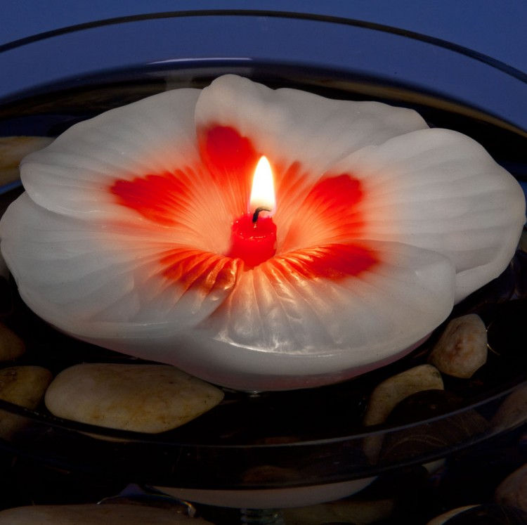 Armadilla Wax Works Floating Hibiscus Candle