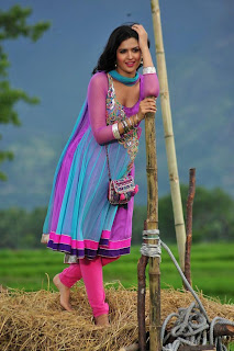 Deeksha Seth Latest Picture in Salwar Kameez