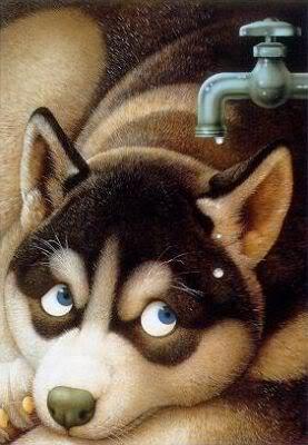 imágenes de perritos tiernos