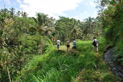 trekking in Bali, mountain climbing batur, sunrise in batur, holiday in Bali