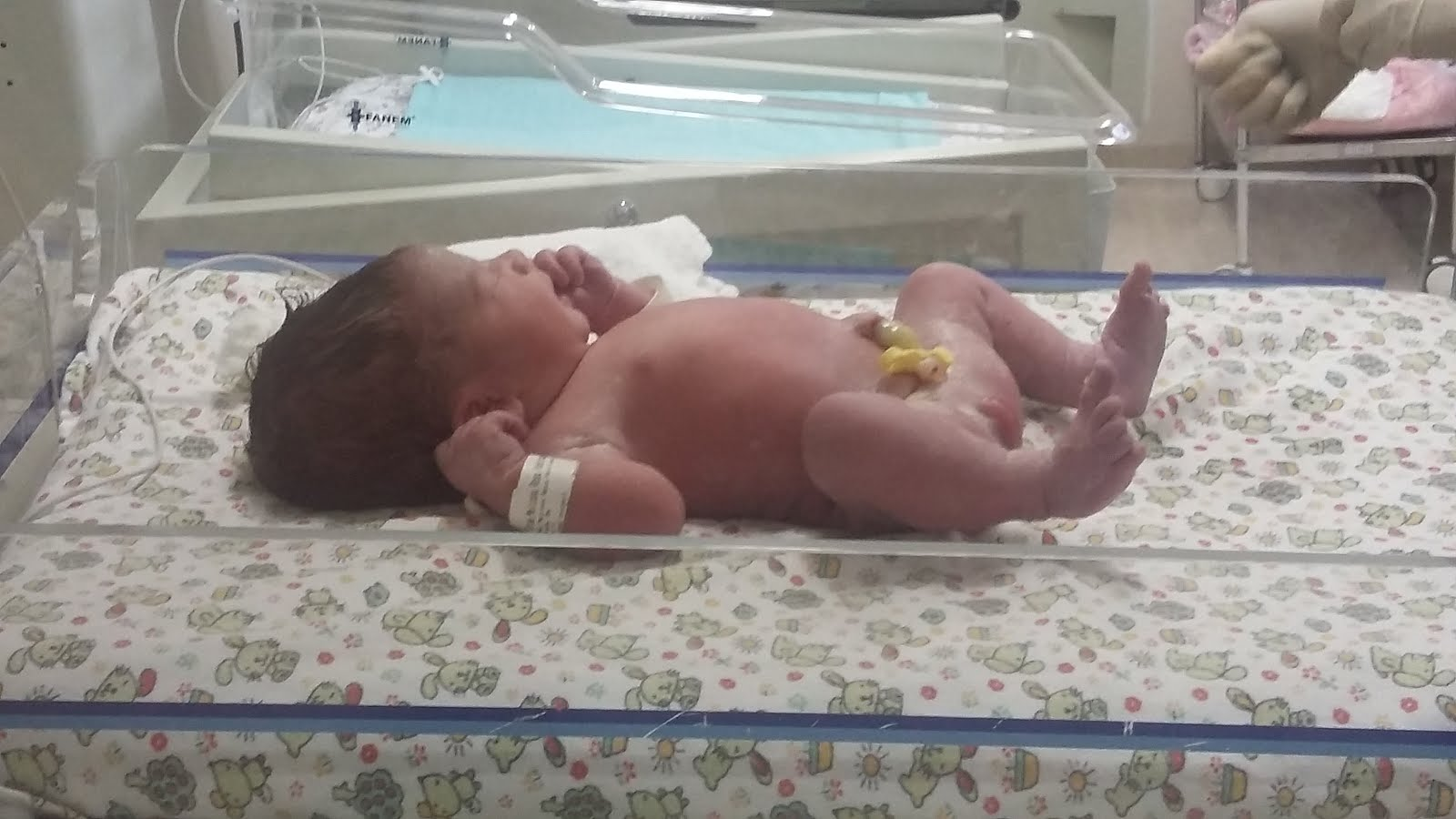 Lavínia nasceu dia 24/06 de parto natural...