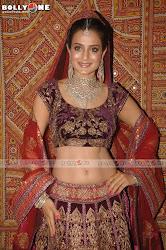 Ameesha Patel Walks Ramp for HVJ Fashion Show