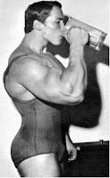 A Síntese de Proteínas e os Músculos
