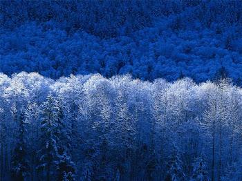 O inverno