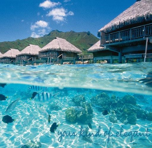 Tahiti Accommodation Over Water Bungalows: .: Water Bungalos In Tahiti
