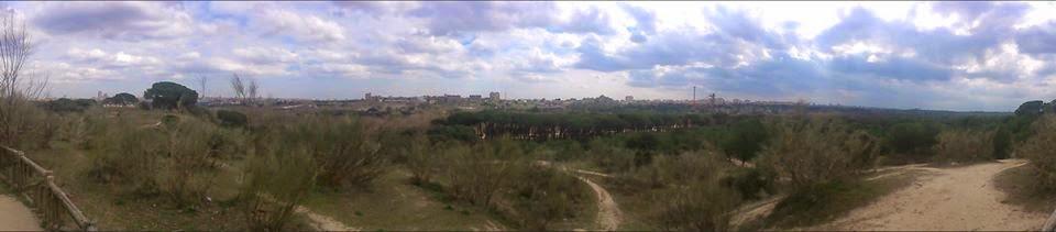 Casa de campo Madrid panorama belle vue