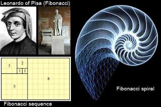 http://2.bp.blogspot.com/-I_e6ElB7XBQ/TcPF16m7q0I/AAAAAAAAAgg/R5diKitepv4/s320/fibonacci.jpg