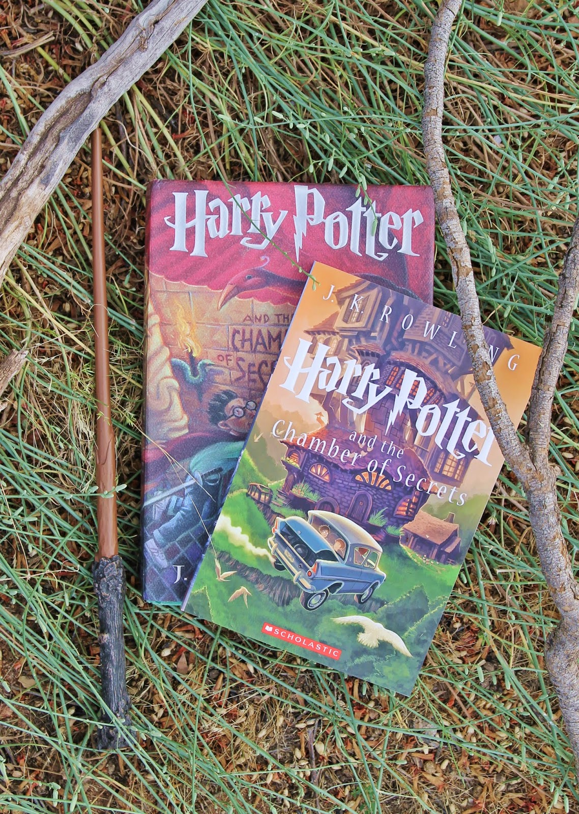 Harry Potter Book Club : Voguish at best harry potter book club the chamber of