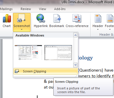 How Can Make Screenshot With Microsoft Office 2010