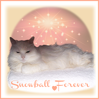 Rest In Peace Snowball