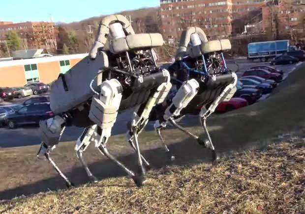 Canggih! Robot 'Anjing' Google Tak Jatuh Walau Ditendang