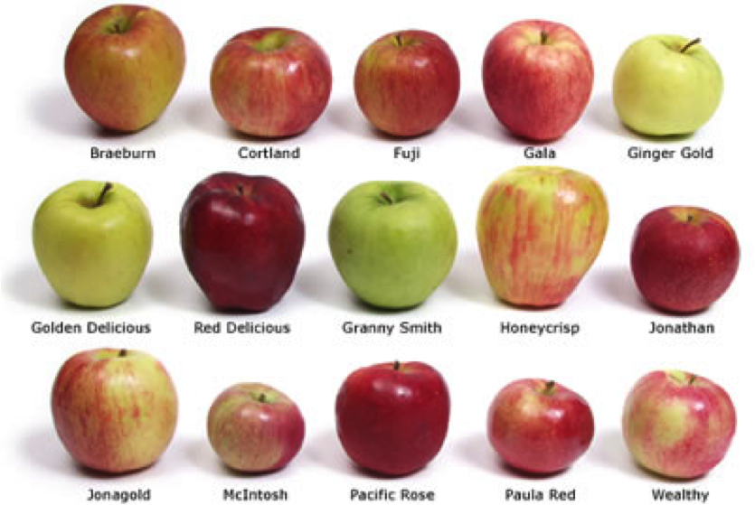 Apples Types