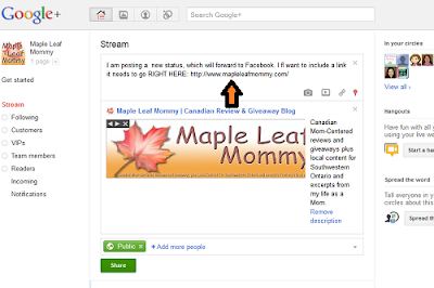 Where to Place URL within Google+ status update