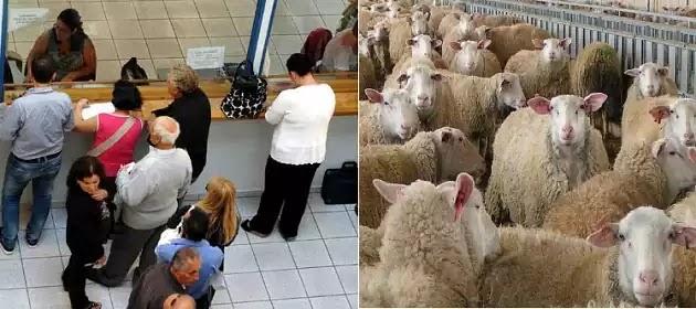 Τι πρέπει να ξέρετε για τη χορήγηση φορολογικής ενημερότητας! και αλλες τέτοιες ηλιθιότητες που μετατρέπουν σε δουλικά πρόβατα την μαζα!