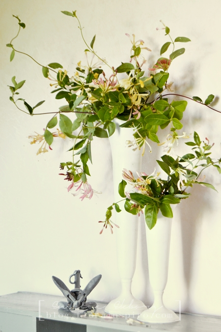 honeysuckle, vase, vase arrangement honeysuckel, hildas hem, blogg hildas hem, arrangements honeysuckle, vases like urns