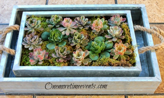 Planting a Faux Succulent garden at One More Time Events.com