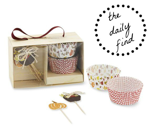 Fall Cupcake Decoration Kit