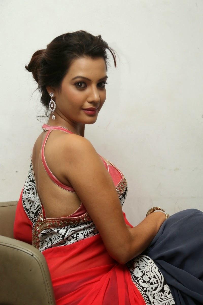 Diksha Panth Hot Saree Pics - Latest Movie Updates, Movie ...