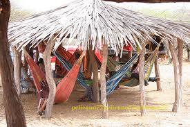 Hospitalidad  Wayuu