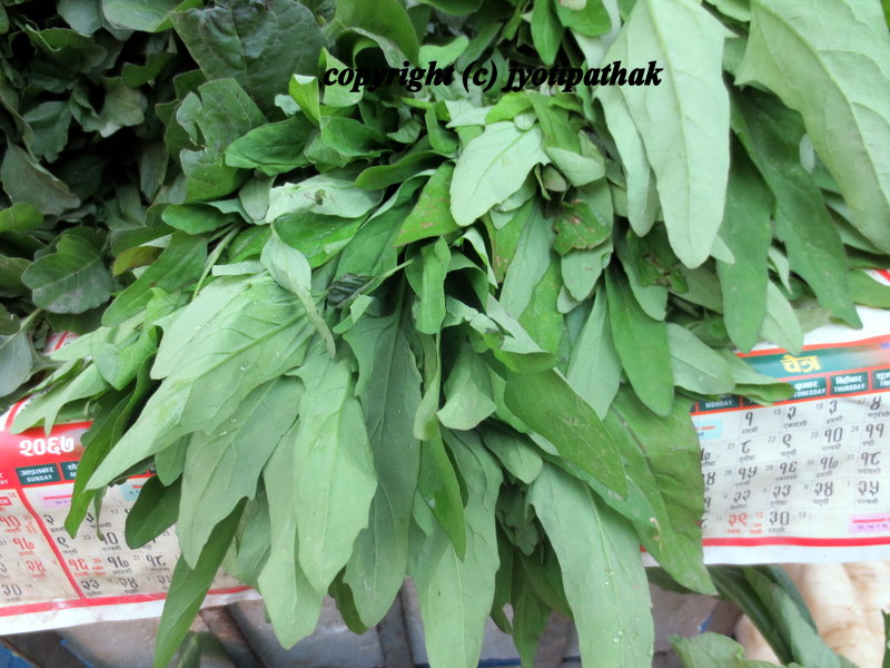 Indian Green Vegetables List Taste of Nepal: Green ...