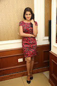 Vishaka singh at rowdy fellow event-thumbnail-16