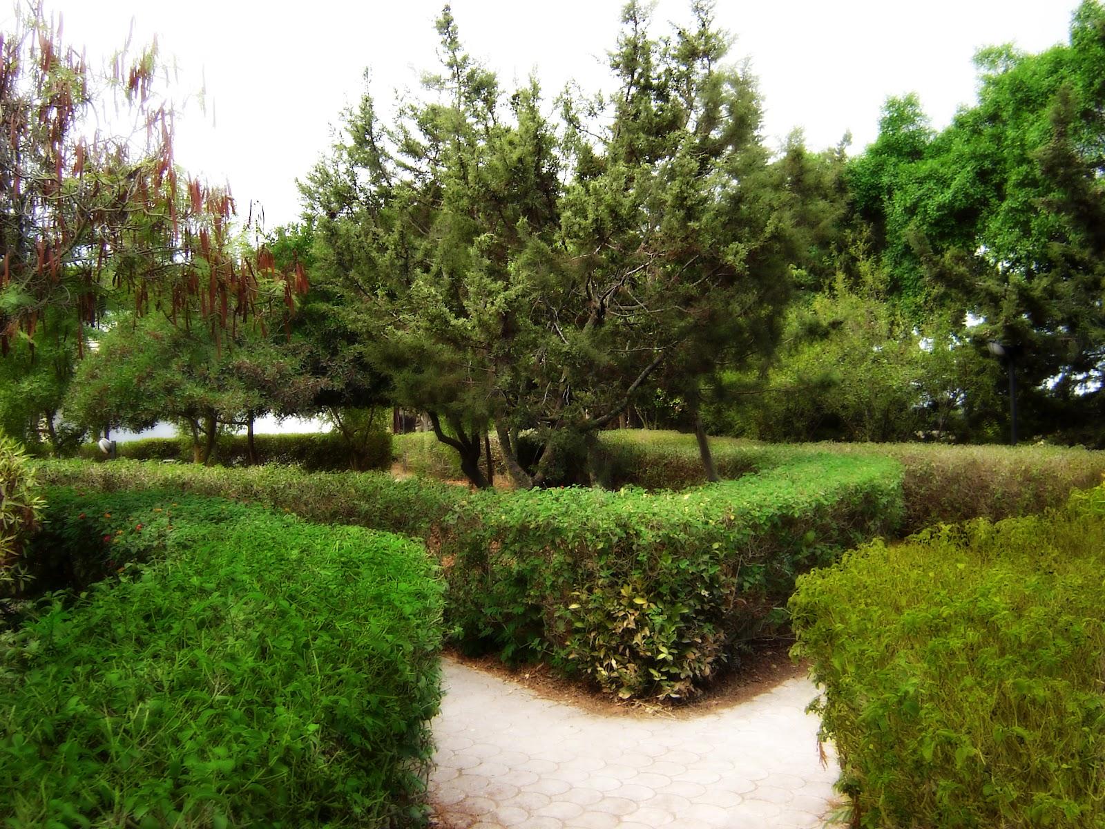 Саду можно встретить символические