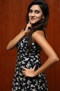 Sita Narayan Latest Pictures  (7).jpg