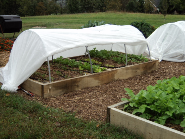 Quick Hoops: Use Low Tunnels to Grow Veggies in Winter - Organic ...