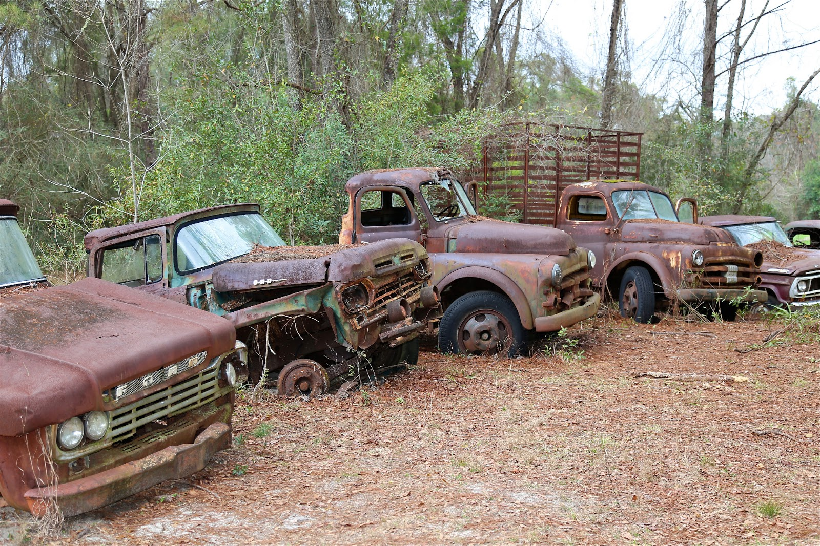 Sweet Southern Days: A Lifetime of Trucks and Cars
