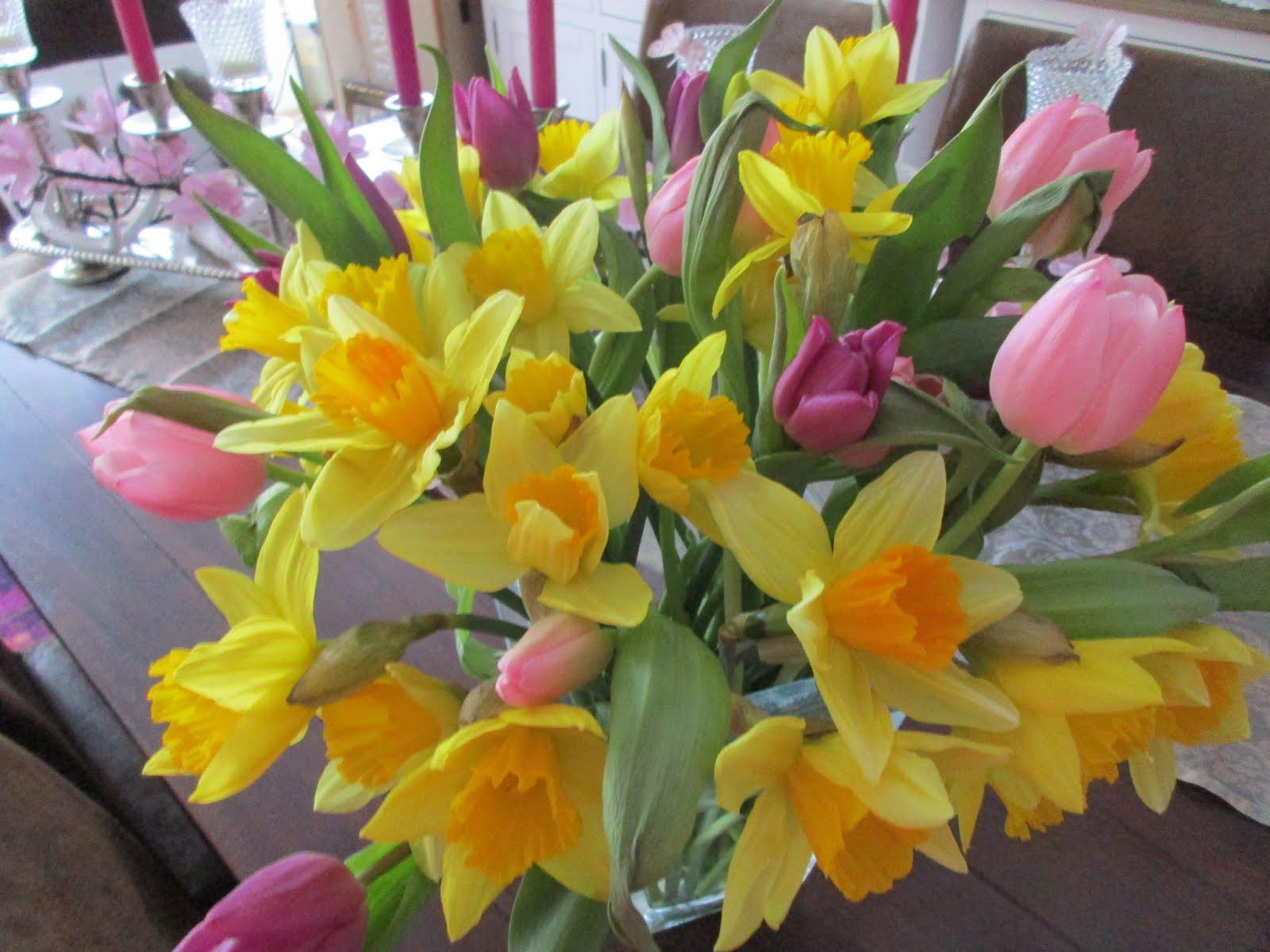 So langsam wird es Frühling...
