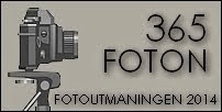 Fotoutmaningen 2014