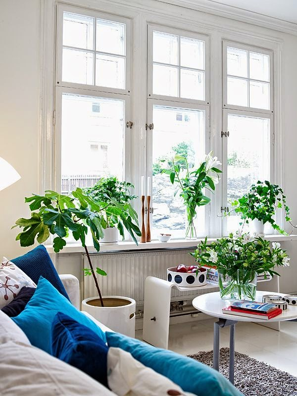 Salón decorado con plantas y jarrones con flores