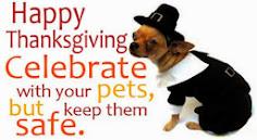 Happy Thanksgiving! :)