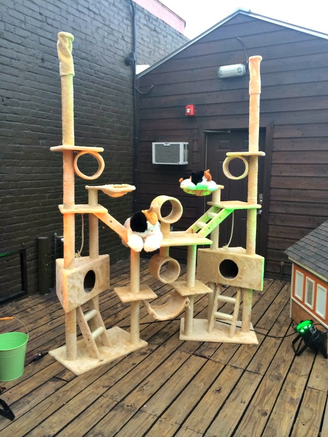 The Holland House: Cat Tree House
