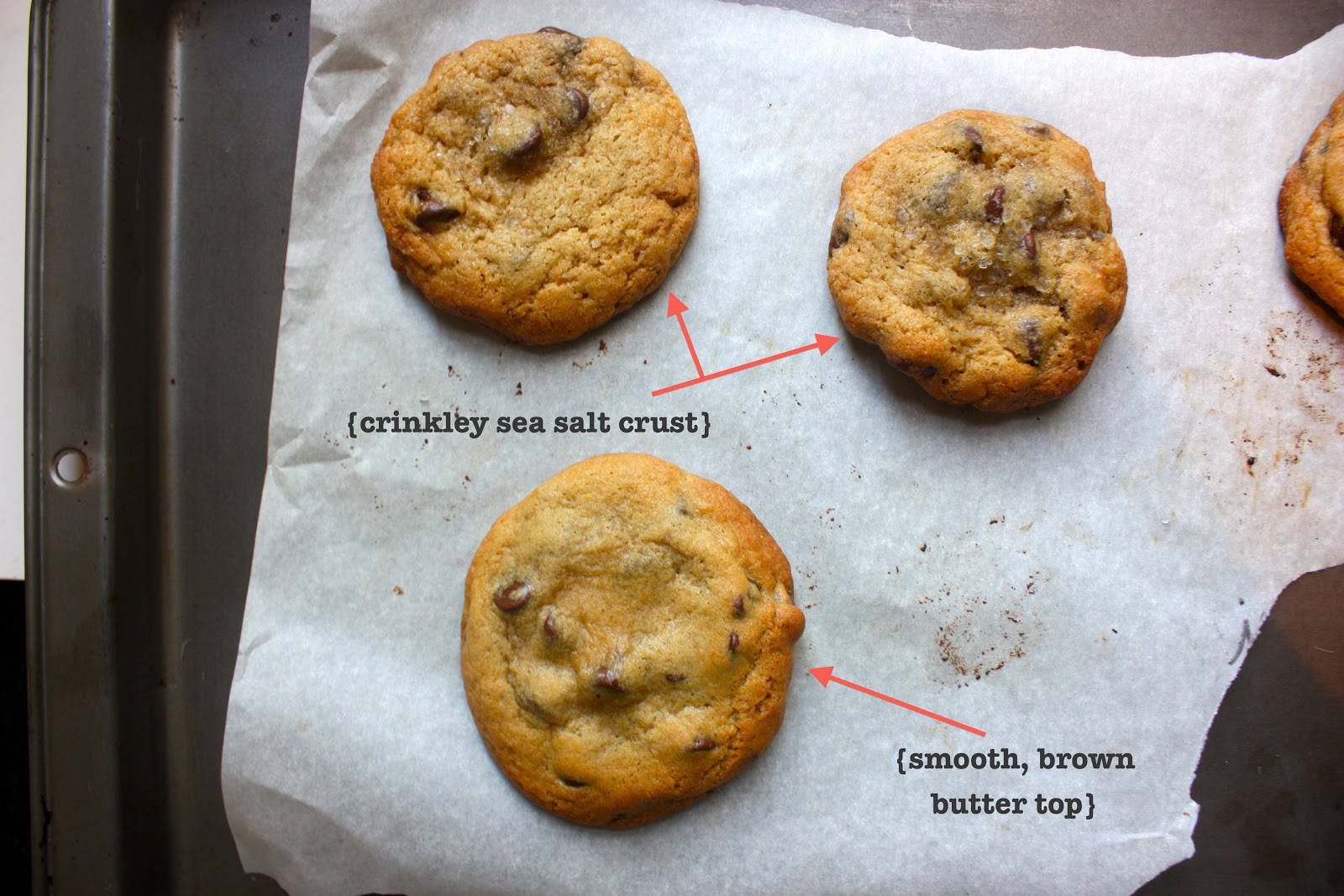 And Jacques Torres Secret Chocolate Chip Cookie Recipe From The Ny Times Both Of These Come From Reputable Sources And Both Have Convincing Evidence