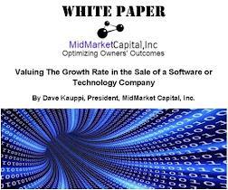 Download this Valuable White Paper and Subscribe to The Exit Strategist Free e-Newsletter