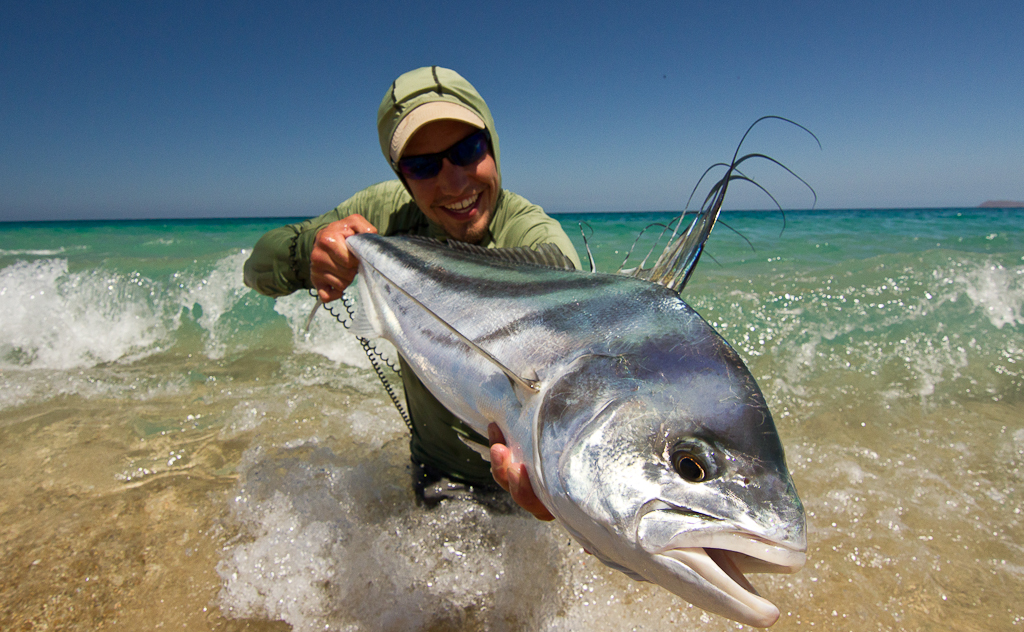 Gorge fly shop blog east cape baja roosterfish and more for Rooster fish cabo